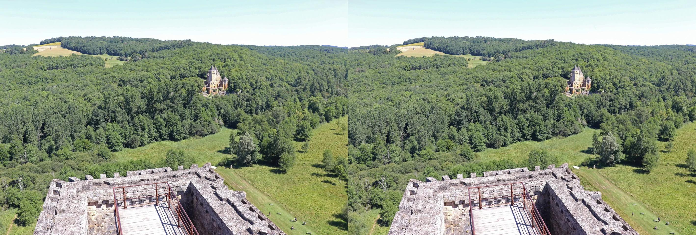 From the top of the dungeon of the castle of Commarque (Dordogne).