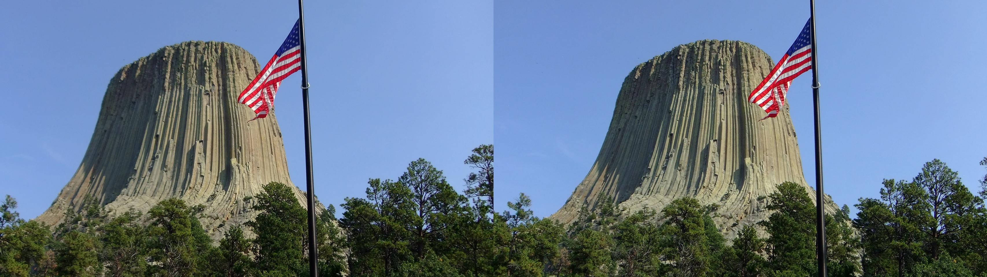Devils Tower & Flag