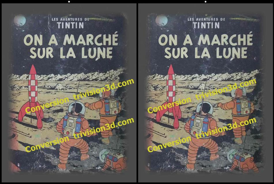 Tintin walk on the Moon