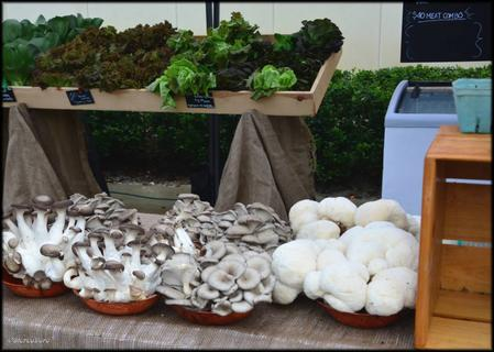 Mushrooms at the Market